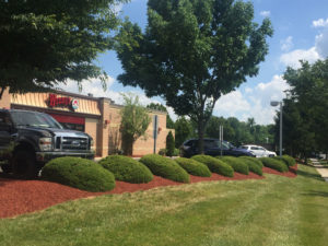 Commercial landscape design and maintenance at Wendys